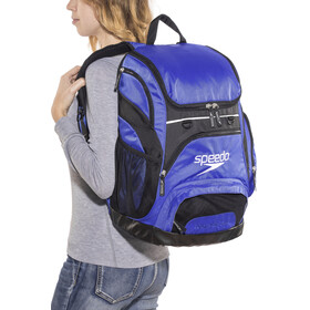 speedo Teamster Backpack L Unisex, royal blue